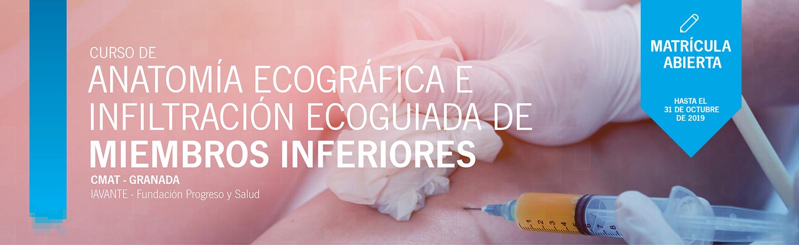 CURSO DE ANATOMÍA ECOGRÁFICA E INFILTRACIÓN ECOGUIADA DE MIEMBROS INFERIORES